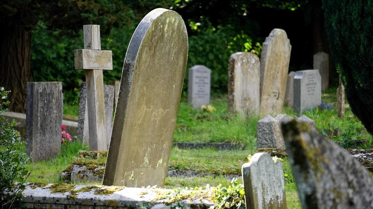 「頓死(とんし)」と「形作り」、将棋用語の意味